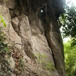 Sorano sacred way, killer roots