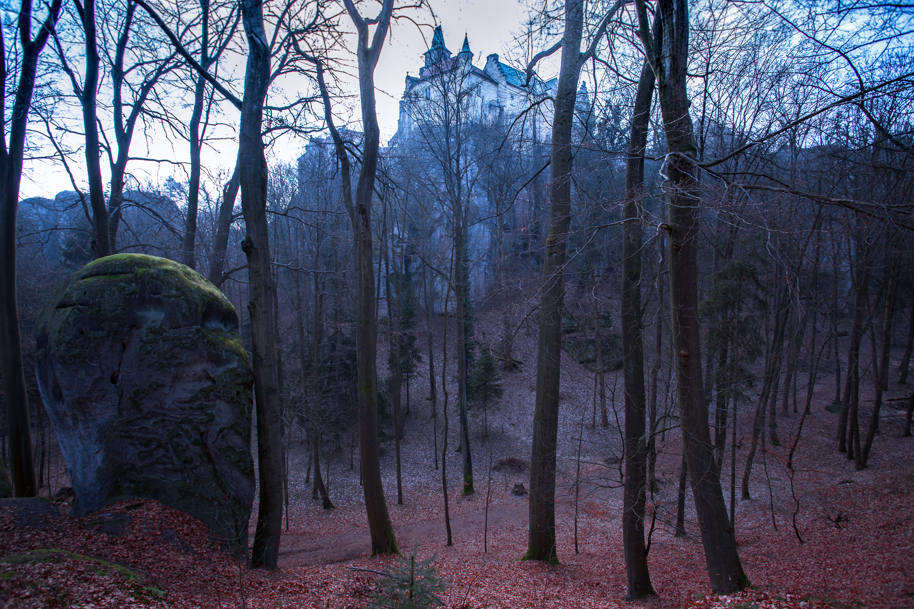 First winter photo workshop in Bohemia for Camera Etrusca. Hruba Skala castle
