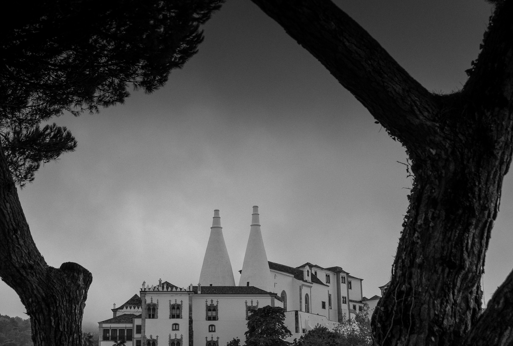 Photo workshops in Lisbon and the Algarve- 15th century Sintra Royal Palace with curious twin chimneys