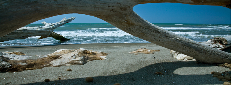 Montalto di Castro skeleton coast