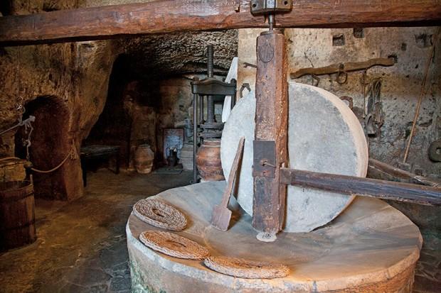 Civita Bagnoregio olive press in cellar