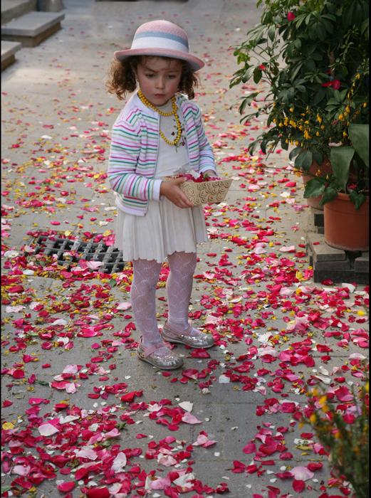 petals by thousands