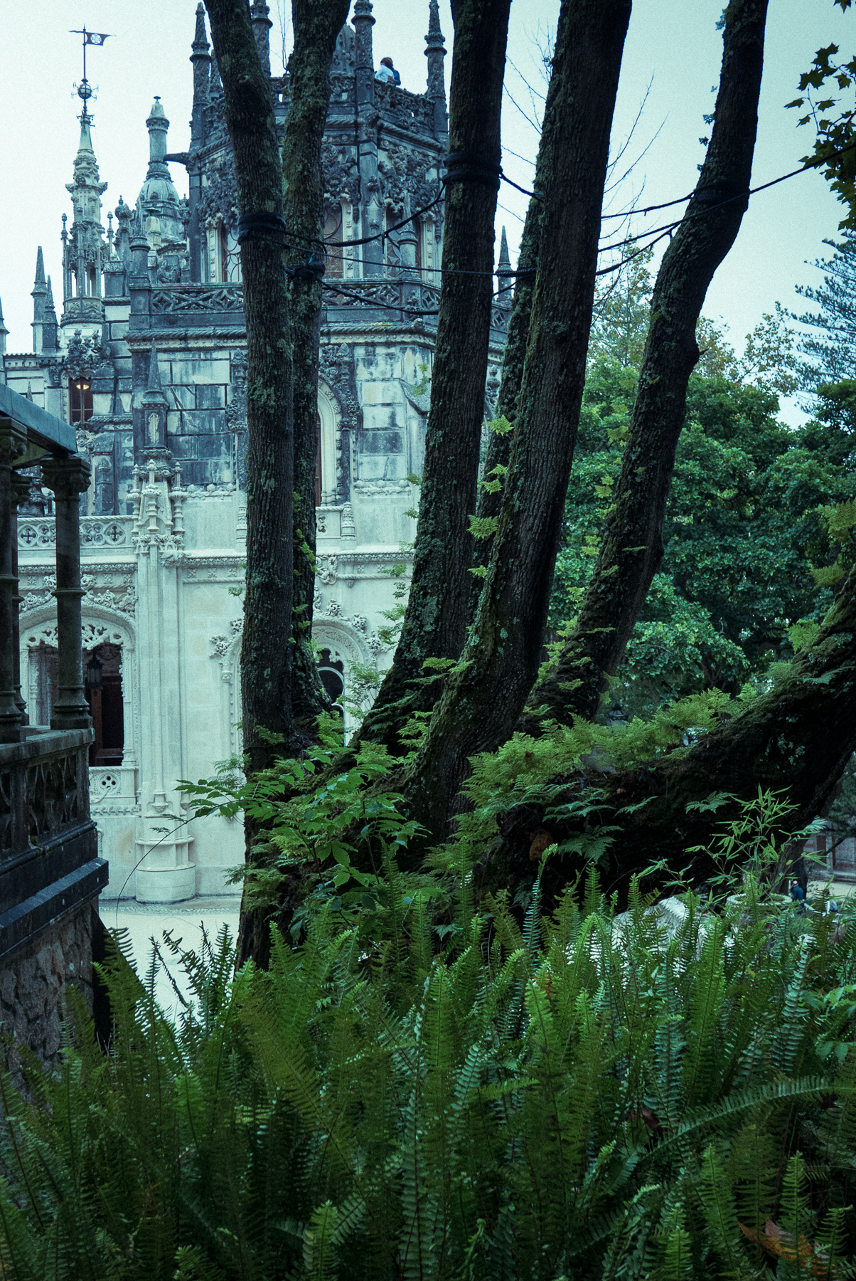 Photo workshops in Lisbon and the Algarve- Sintra, mock-gothic Quinta da Regaleira palace